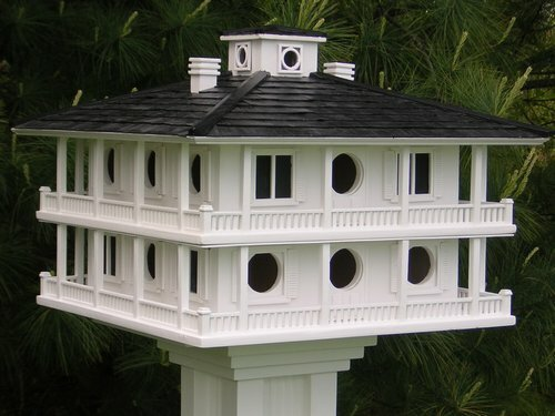 Clubhouse for Purple Martins Bird Feeder