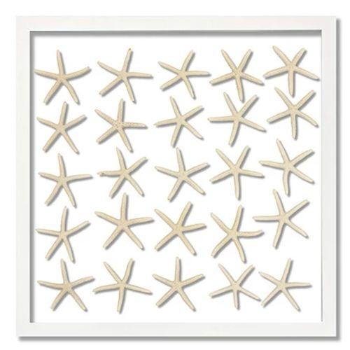 25 Skinny Starfish