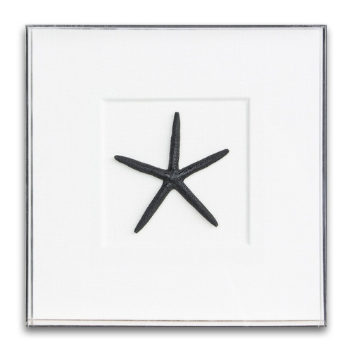 Acrylic Boxes Starfish Beach Wall Art