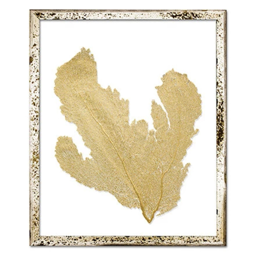 Classic Sea Fan Beach Wall Art - Metallic Gold