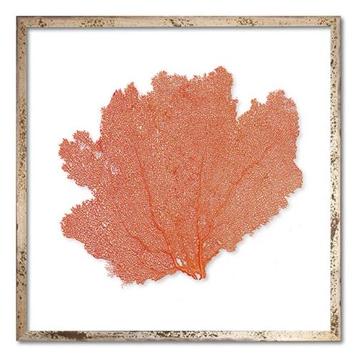 Classic Sea Fan Beach Wall Art - Sunset Orange