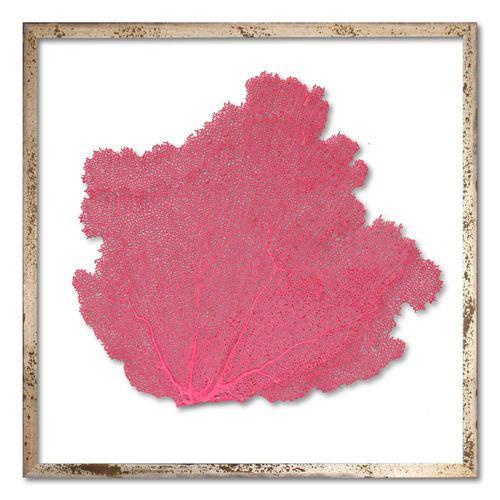 Classic Sea Fan Beach Wall Art - Tropical Pink