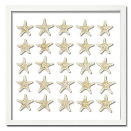 Knobby Starfish Beach Wall Art - Two Size Options