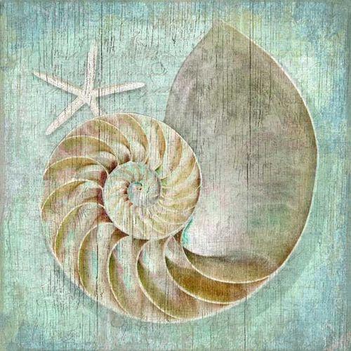 Nautilus Vintage Sign