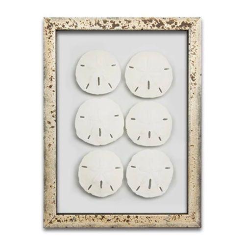 Sand Dollars Mini Series Wall Art