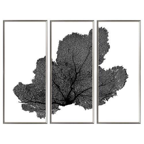 Sea Fan Triptych Coastal Artwork