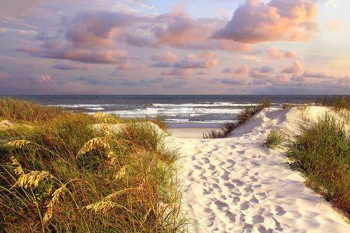 Beach Path Giclee