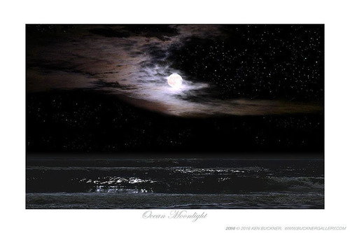 Ocean Moonlight Giclee Print For Sale Cottage Amp Bungalow