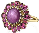 Stunning 5.83ct Oval Star Ruby Flower Ring With Marquise Garnet & Pear Ruby Petals - 18kt Yellow Gold