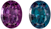 Amazing Fine Gubelin Certified Genuine Loose Alexandrite Gemstone in Oval Cut, 7.38 x 5.63 x 3.94 mm, Teal Blue Green to Rich Eggplant, 1.28 carats