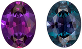 Top Top Gem Gubelin Certified Genuine Loose Alexandrite Gemstone in Oval Cut, 9.3 x 6.92 x 4.17 mm, Teal Blue Green to Rich Eggplant, 1.93 carats