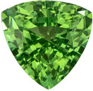 Stunning Green Tourmaline 1.41 carats, Trillion shape gemstone, 6.7  mm