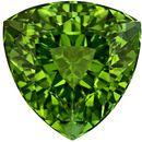 9.1 mm Green Tourmaline Genuine Gemstone in Trillion Cut, Vivid Grass Green, 3.08 carats