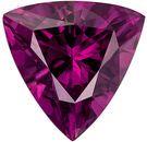 Desirable Genuine Rhodolite Gem in Trillion Cut, 7.2 mm in Gorgeous Rich Raspberry, 1.34 carats