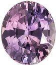 GIA Certified No Heat 9.3 x 8 mm Purple Sapphire Genuine Gemstone in Oval Cut, Multicolor Steel Lavender, Pink & Orange, 3.21 carats
