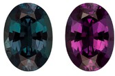 Natural Color Change Alexandrite Gemstone, Oval Cut, 1.79 carats, 8.81 x 6.31 x 4.16 mm , Gubelin Certified - A Deal