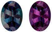Rare Total Color Change Alexandrite Gemstone, 0.58 Carats, Oval Shape, 6.15 x 4.4 x 2.84 mm, Stunning Total Color Change Color with GIA Cert