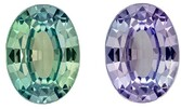 Rare Total Color Change Alexandrite Gemstone, 1.04 Carats, Oval Shape, 7.4 x 5.54 x 3.08 mm, Stunning Total Color Change Color with GIA Cert