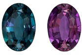 Selected Color Change Alexandrite Gemstone, 1.16 carats, Oval Cut, 7.91 x 5.57 x 3.25 mm, Great Looking Stone with Gubelin Cert