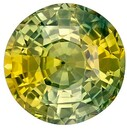 Stunning BICOLOR Sapphire Gemstone, 1.61 Carats, Round Shape, 6.7 mm, Stunning Mixed Colors