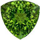 9.1 mm, 3.08 carats Green Tourmaline Gemstone in Striking Intense Grass Green Trillion Gemstone