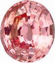 Brilliant and Bright Peach Sapphire Gemstone- Best Price! Oval Cut, 1.74 carats