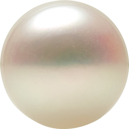 Engagement White Freshwater Cultured Pearl, Button Shape Half Drilled, Grade AAA, 7-7.9 mm in Size