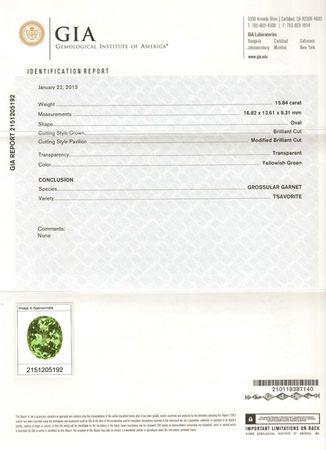 Striking Large Tsavorite Garnet Loose Gem in Oval Cut, 16.82 x 13.61 x 9.31 mm, 15.84 carats with GIA Certificate