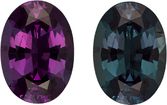 100% Color Change Blue Green to Burgundy Alexandrite Brazil Gem in Oval Cut, 8.8 x 6.3 mm, 1.79 Carats - With Gubelin Certificate