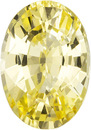 Unheated GIA Yellow Sapphire Gem in Oval Cut, 8.55 x 5.97 x 3.99 mm, 1.65 carats