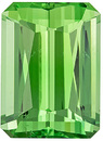 Stunner Tsavorite Garnet in Emerald Cut, Intense Minty Green, 9.4 x 6.9 mm, 3.35 carats