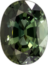 Very Pretty Oval Cut Blue Green Sapphire Loose Gem, Open Forest Green, 7.8 x 5.9 mm, 1.52 carats