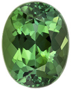 Bright & Lively Tourmaline Loose Gem in Oval Cut, Rich Grass Green, 9.1 x 7.1 mm, 2.24 carats