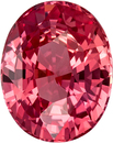 No Treatment Vivid Color Padparadscha Sapphire Gem in Oval Cut, GIA Cert Unheated in 7.7 x 6.13 x 4.4 mm, 1.73 carats