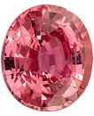Low Price on Intense Peachy Pink Sapphire Natural Gemstone for SALE, Oval Cut, 2.12 carats