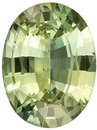 Lovely Green Sapphire Loose Gemstone in Oval Cut, Lemony Green, 8.1 x 6 mm, 1.25 carats