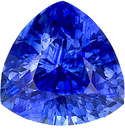 Very Clean Well Cut Vibrant Rich Blue Ceylon Sapphire in 6.7 mm, Trillion Cut, 1.50 carats