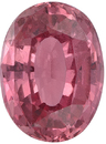 Great Deal on Pretty Padparadscha Sapphire Gemstone in Oval Cut, Rich Orange Pink Color in 8.34 x 6.17 mm, 1.84 Carats - With GRS Certificate