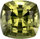 Pretty No Heat Sapphire Loose Gem in Cushion Cut, Rich Yellowish Green, 6.82 x 6.72 mm, 1.66 carats - With GIA Certificate
