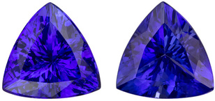 Super Saturated Tanzanite Stunning Quality Pair in Trillion Cut, Vivid Blue Purple, 9.6 mm, 5.65 carats