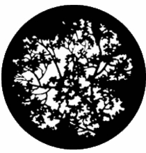 Rosco Blossoms 77774 Standard Steel Gobo