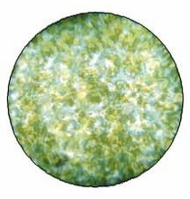Rosco Green Yellow Stippled Colorizer Glass Gobo Pattern B Size 55008