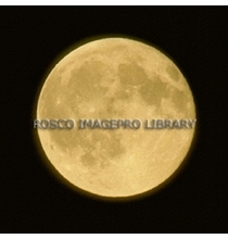 Rosco iPro Slide Full Moon P1620