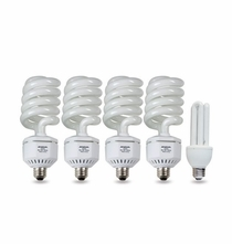 "Westcott 5 pack (4) 50-watt and (1) 20W <b><font color=""blue""> Daylight</b></font color> Fluorescent Lamps"
