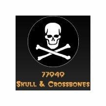 Rosco Skull and Crossbones 77949 Standard Steel Gobo