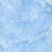 Lastolite 10'x12' Knitted Ezycare Background - Maine