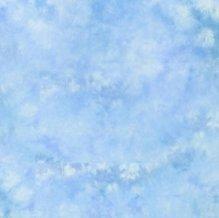 Lastolite 10'x24' Knitted Ezycare Background - Maine