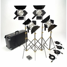 Lowel Omni 4 Lighting Kit with TO-83 Case O1-953Z