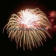 Rosco iPro Slide Fireworks P2852
