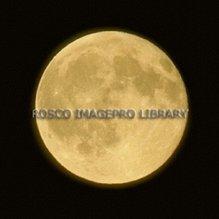 Rosco iPro Slide Full Moon P1620